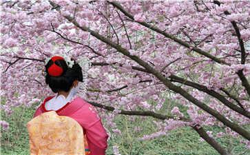 中小学秋季日语培训班哪家机构好 日语高考 第1张